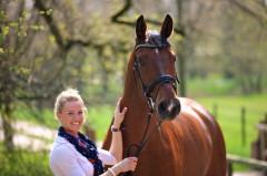 Verkaufspferde, Walk of Silence, Larong, Reitpferdeprüfungen, Erfolgspferde